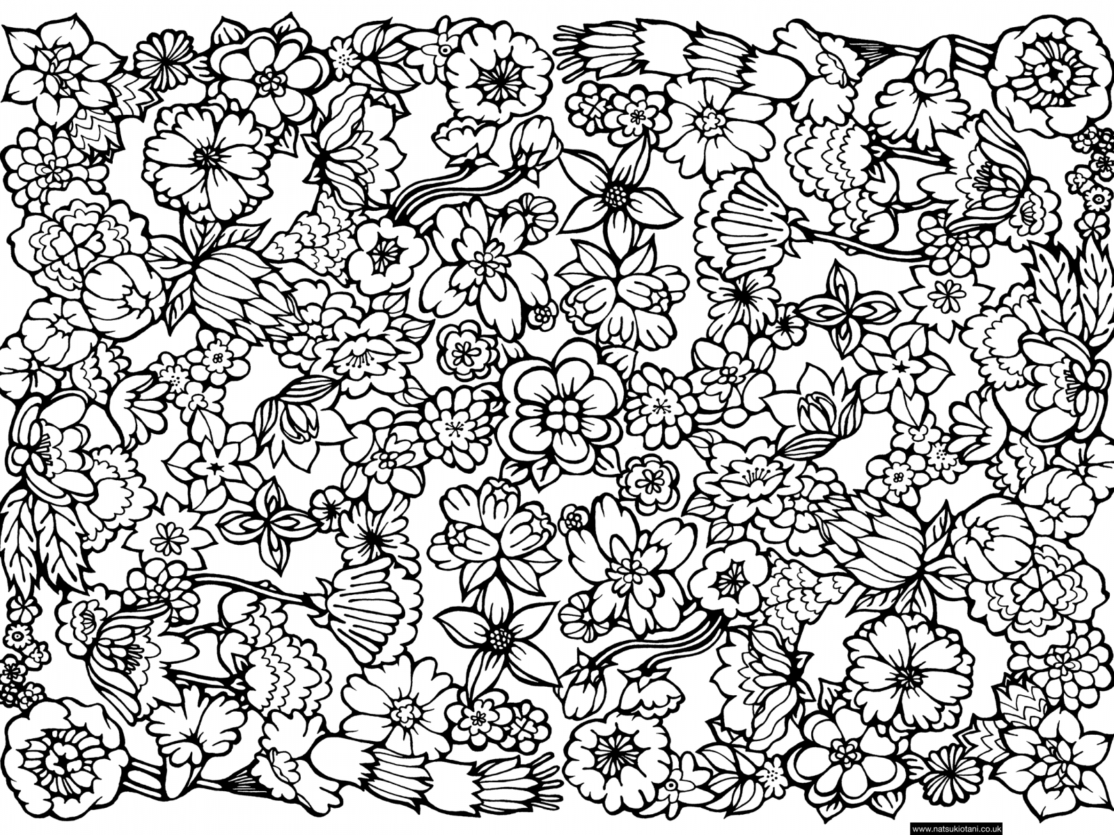 1600x1200 Geometric Patterns Coloring Pages Date Nights Free