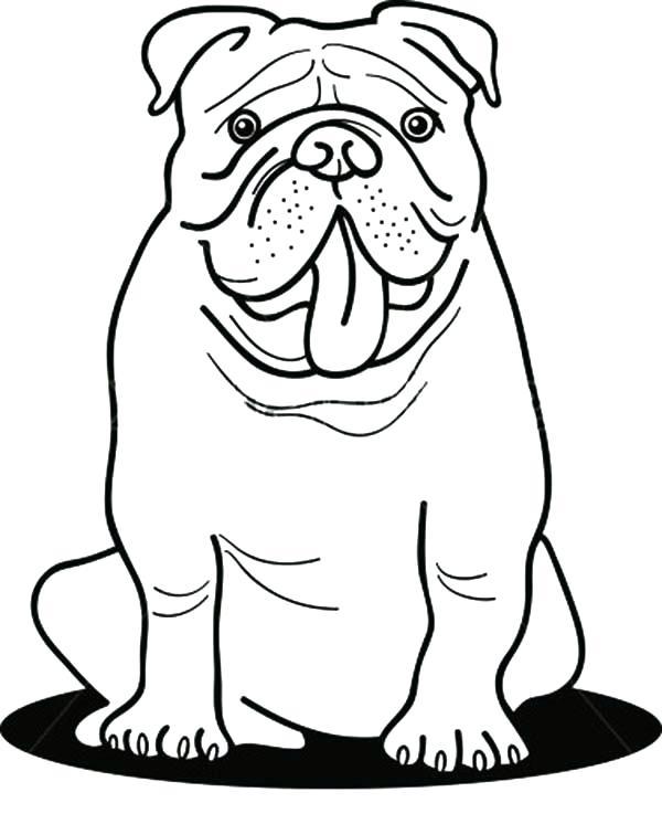 600x746 Bulldog Coloring Pages Funny Bulldog Coloring Pages Georgia