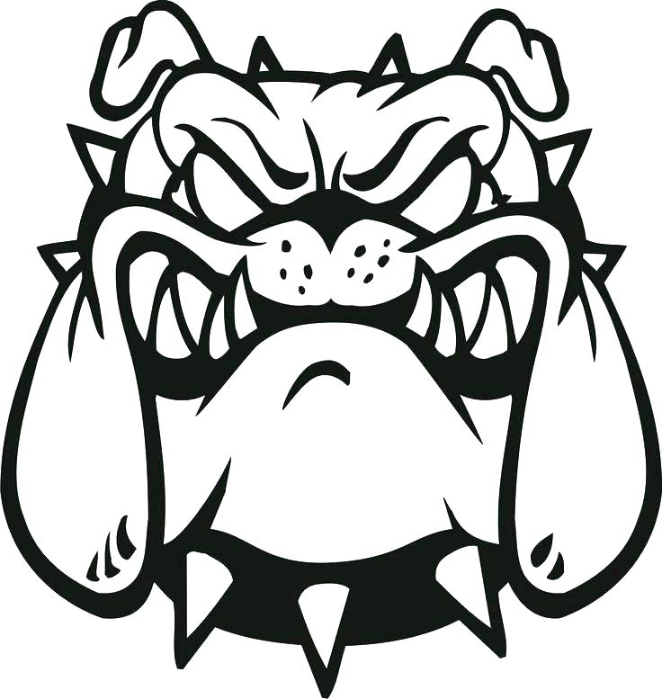 736x777 Bulldog Coloring Pages