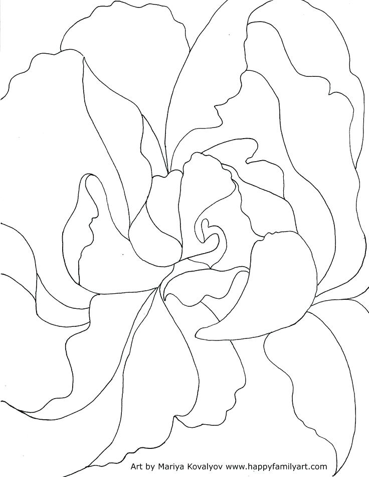 736x950 Georgia Coloring Pages Teleks Site