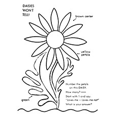 Gerber Daisy Coloring Pages