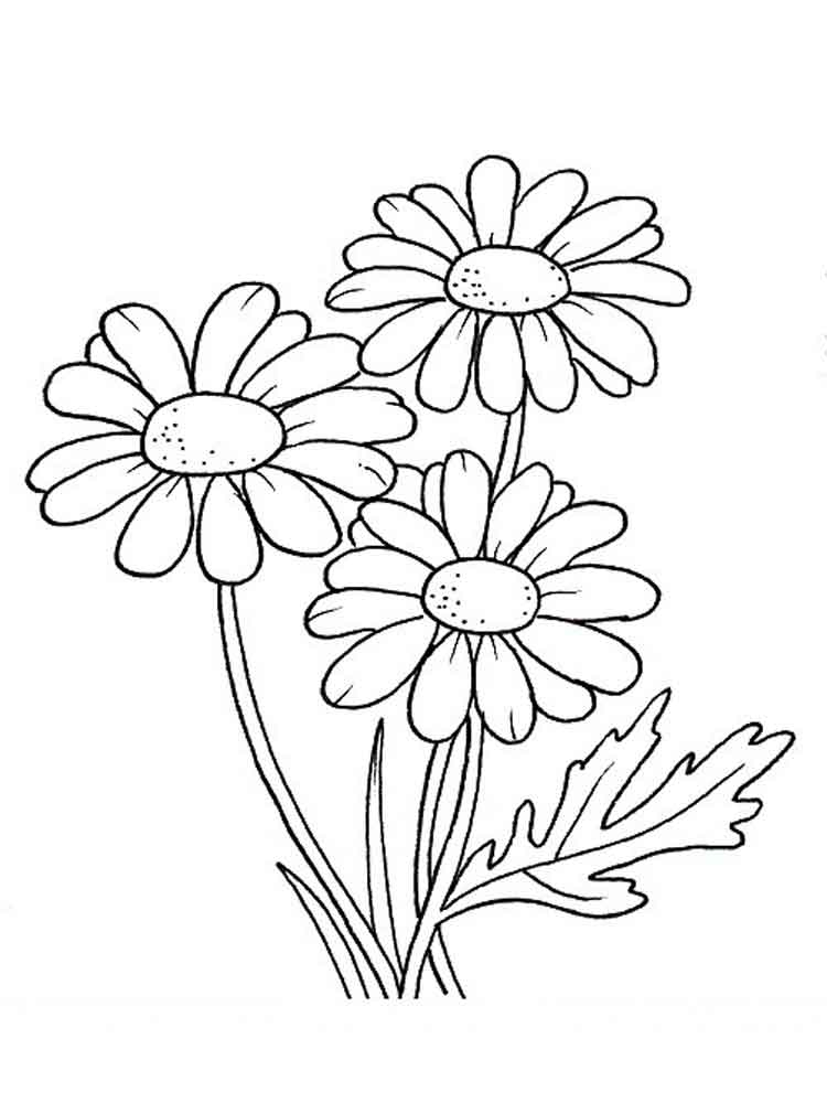 750x1000 Daisy Coloring Pages
