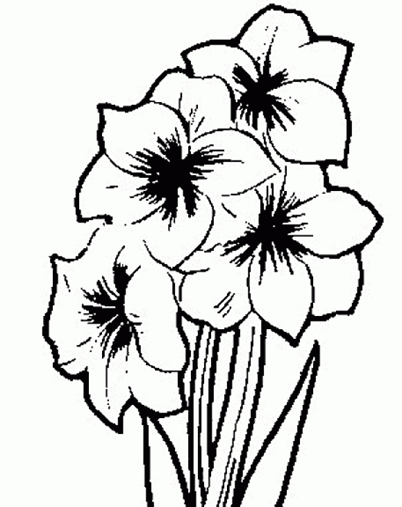 579x730 Free Coloring Picture Of Flower For Grown Ups Adult Coloring