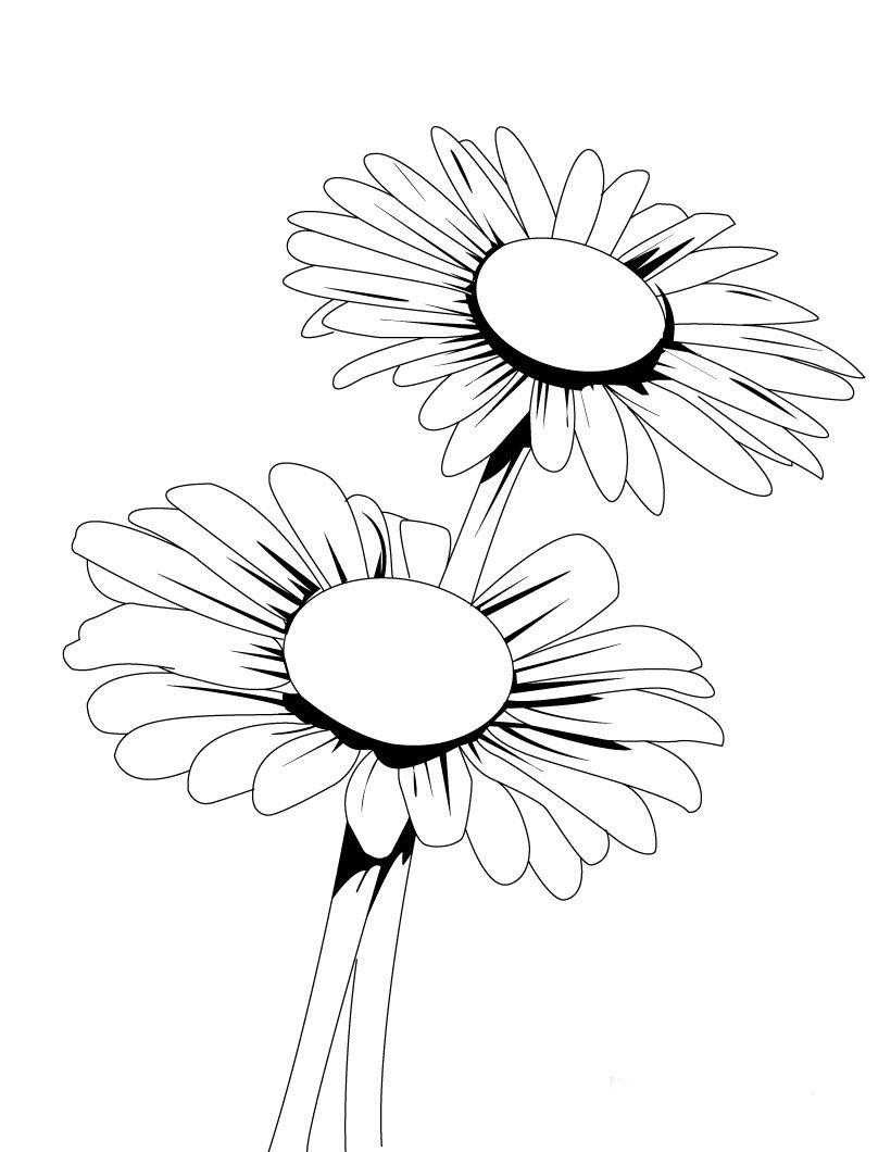 820x1060 Resultado De Imagen Para Dibujos De Flores De Margaritas Muchos