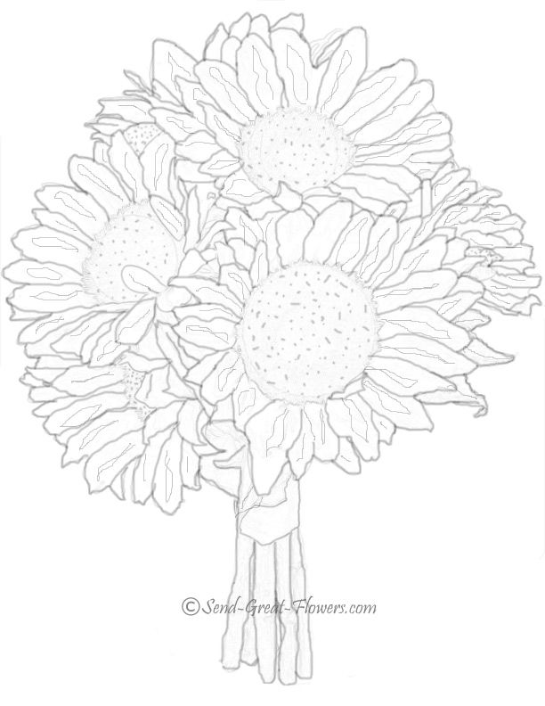 612x792 Sunflower Summer Coloring Page Projects To Try