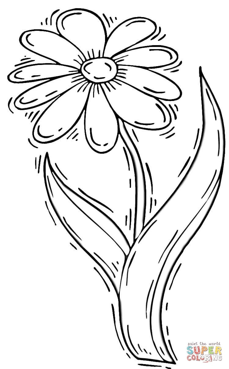 750x1210 Coloring Pages Of Daisy Flower Best Of Daisy Flower Coloring Page