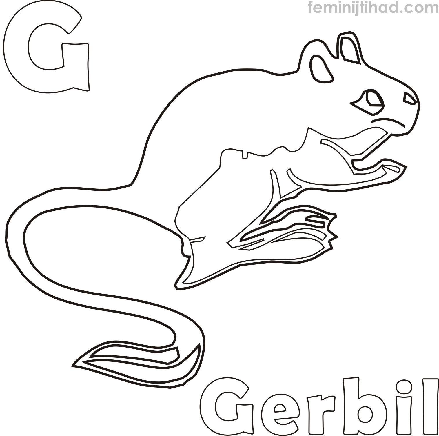 1515x1504 Gerbil Coloring Pages Collection Coloring Pages For Kids