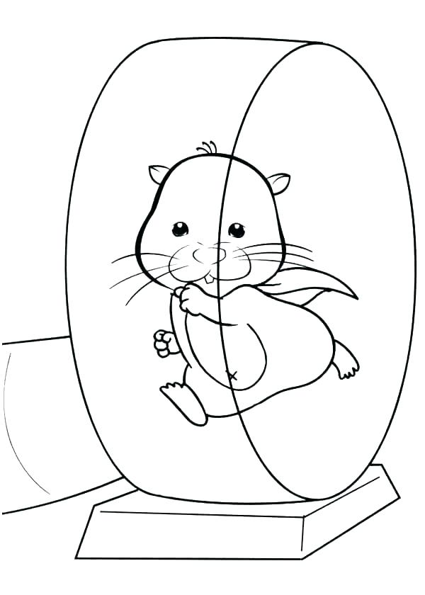 600x840 Hamster Coloring Pages Printable Gerbil Coloring Pages Gerbil