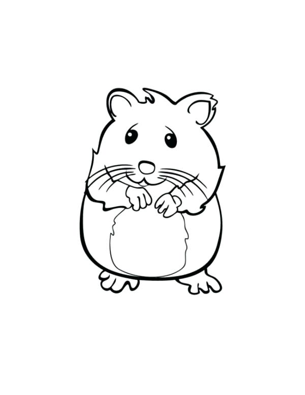 600x776 Humphrey Hamster Coloring Pages New Gerbil For Twin Squeaks May