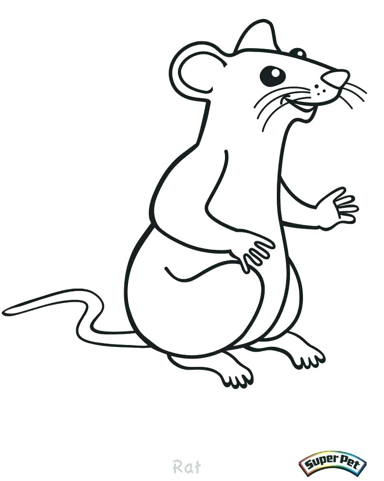 792x990 Rat Coloring Pages Gerbil Coloring Pages Rat Coloring Pages Large