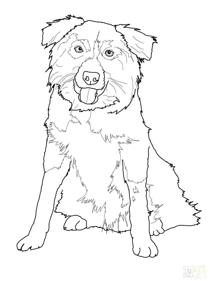 The Best Free Shepherd Coloring Page Images Download From 556 Free Coloring Pages Of Shepherd At Getdrawings
