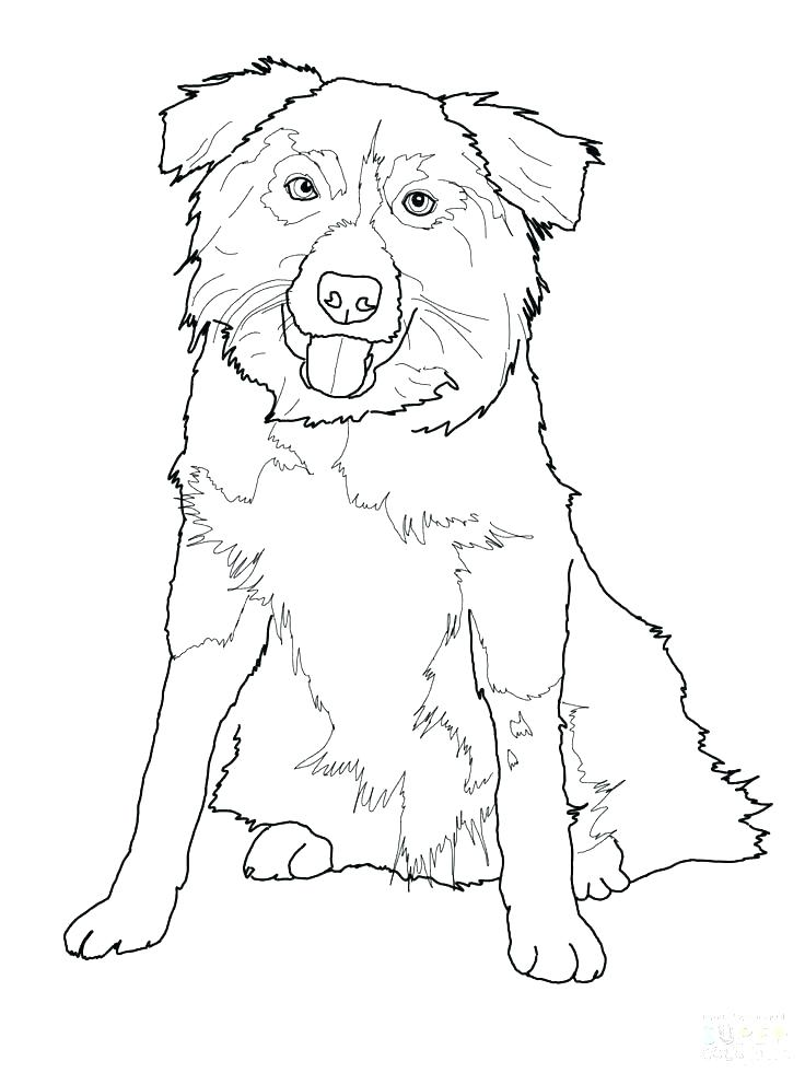 736x981 German Shepherd Coloring Pages Coloring Pages Shepherd Coloring