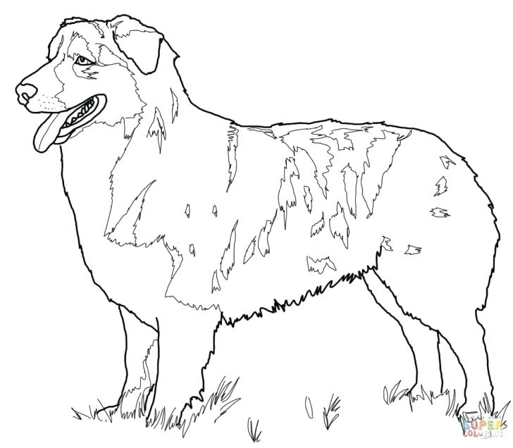 728x636 Realistic German Shepherd Coloring Pages Page Printable Flag Puppy