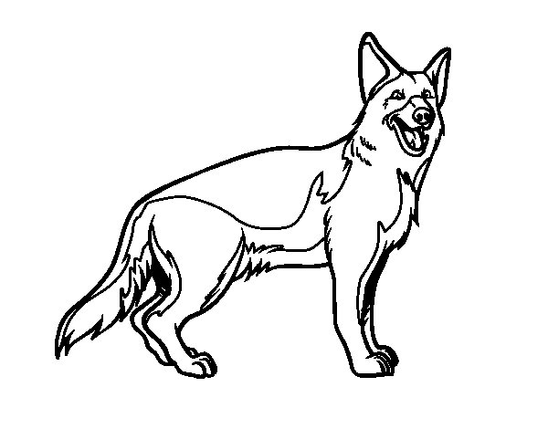 600x470 Coloring Pages Of German Shepherds Free Free Coloring Sheets