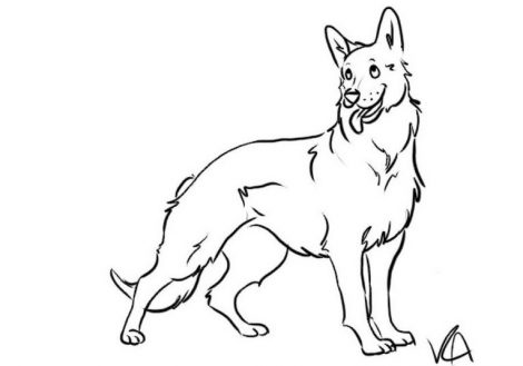 470x329 German Shepherd Coloring Pages To Download And Print For Free