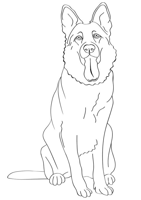 595x842 Free Printable Dogs And Puppies Coloring Pages For Kids German