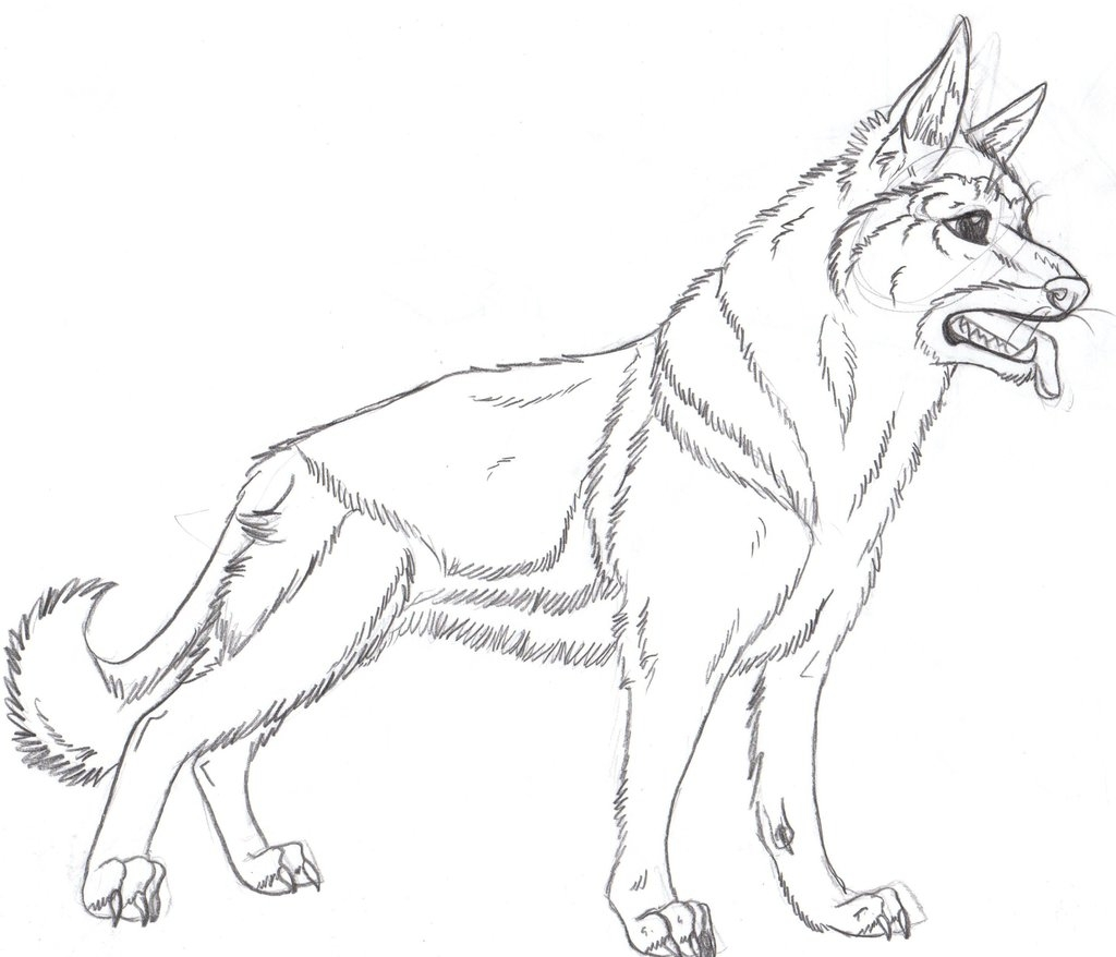 1024x878 New The German Shepherd Dog Free Coloring Pages Download