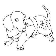 220x220 Dog Coloring Pages