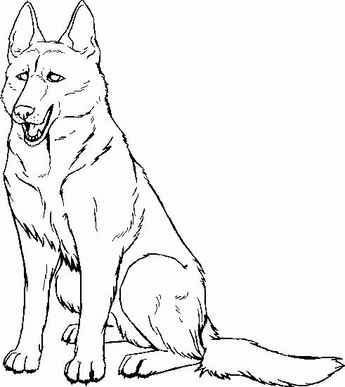 491x550 German Shepherd Coloring Pages Free Gallery German Shepherd Puppy