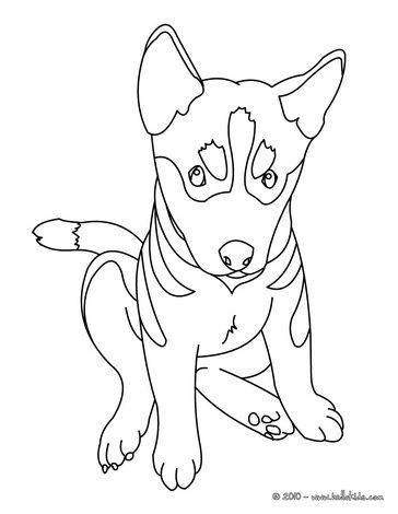 364x470 German Shepherd Puppy Kids And Pets Coloring Pages