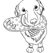 220x220 German Shepherd Puppy Coloring Pages