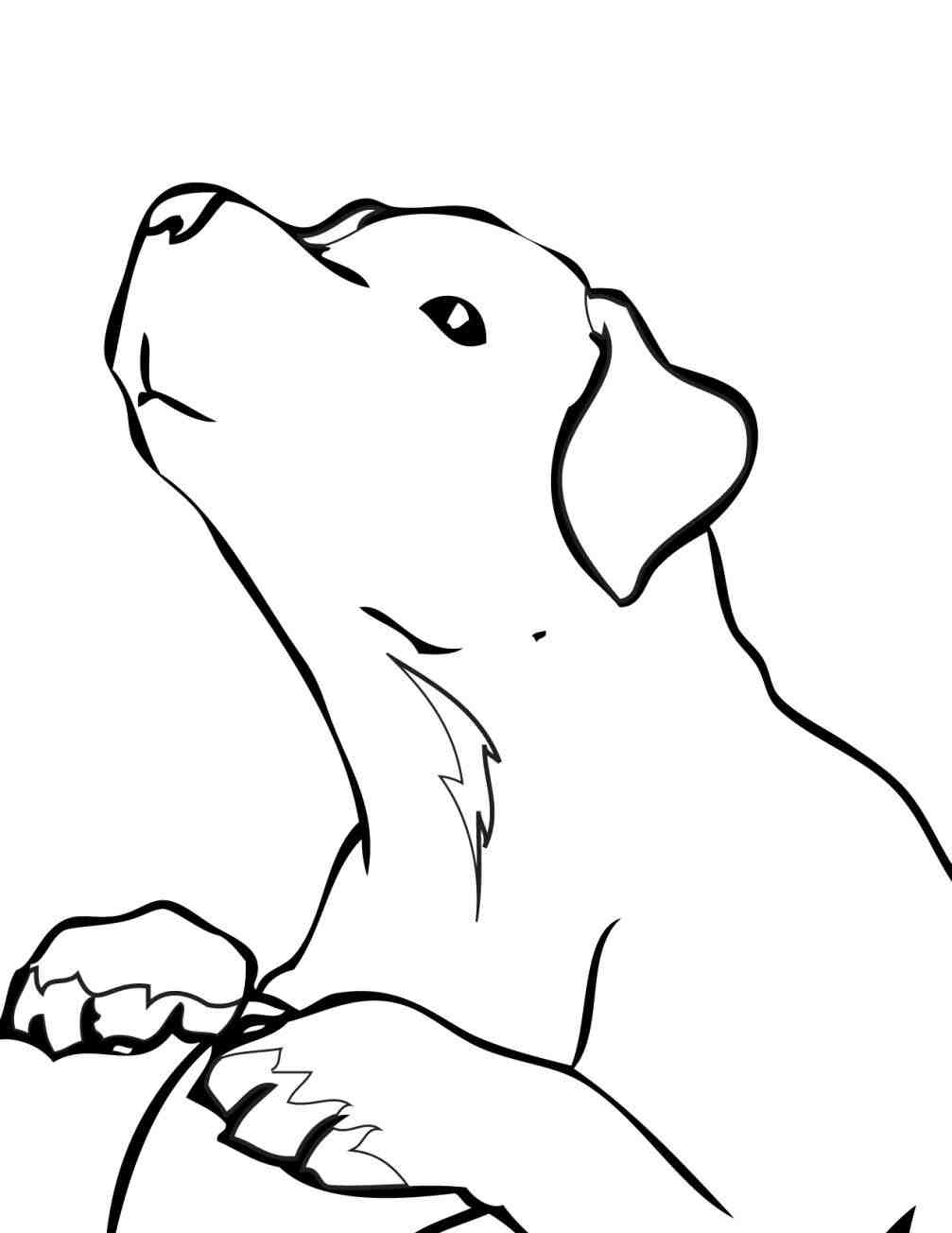 1007x1304 Ok Pictures Page Of A Kids Pug For Kids Lab Puppy Coloring Pages