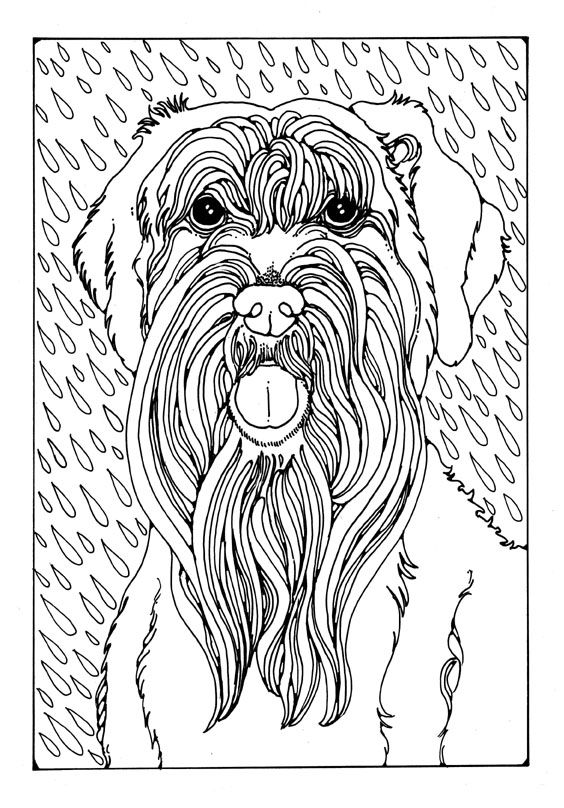 564x808 Best Just Dogs Images On Colouring Pages, Coloring
