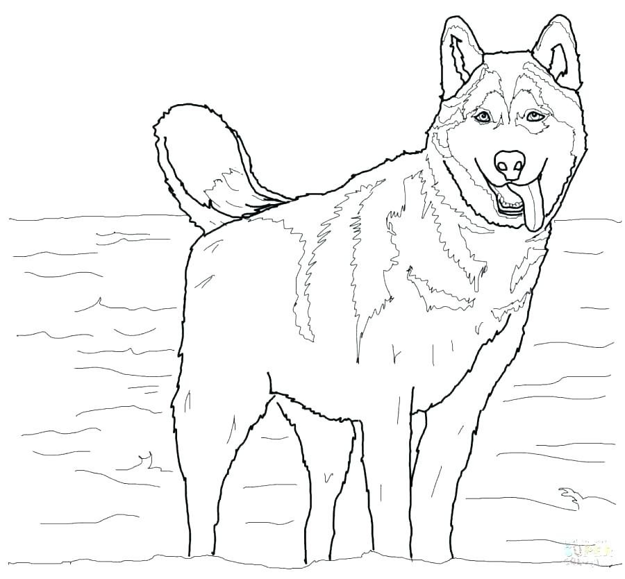 900x834 Germany Flag Coloring Page Shepherd Coloring Page Sitting Free