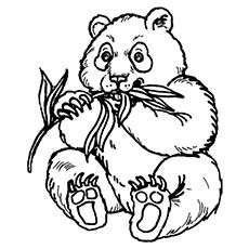 Giant Panda Coloring Page at GetDrawings.com | Free for ...