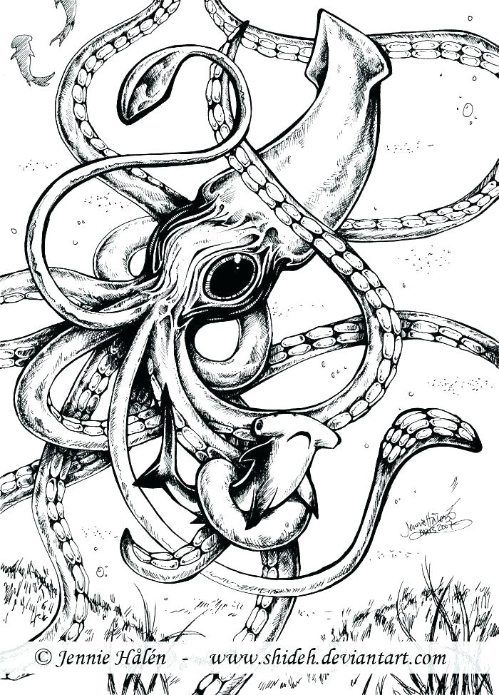 700x974 Squid Coloring Page Squid Coloring Page Squid Coloring Page Giant