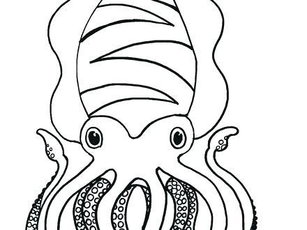 440x330 Squid Coloring Pages Squid Coloring Pages Giant Squid Coloring