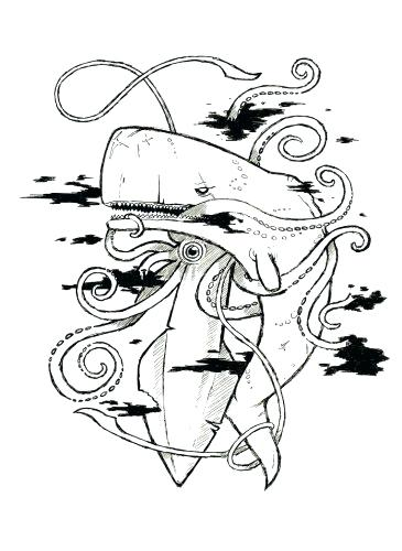 365x500 Giant Squid Coloring Pages Medium Size Of Squid Coloring Pages