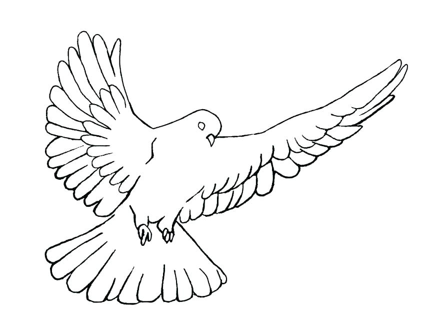 866x669 The Fruit Of The Holy Spirit Coloring Page Free Printable Holy