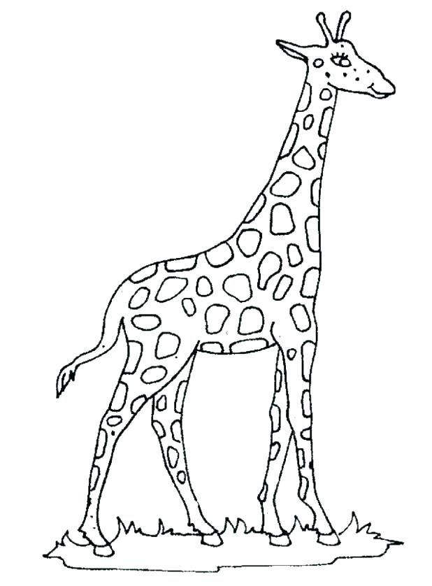 618x838 Giraffe Coloring Pages Baby Giraffe Coloring Pages Free Printable