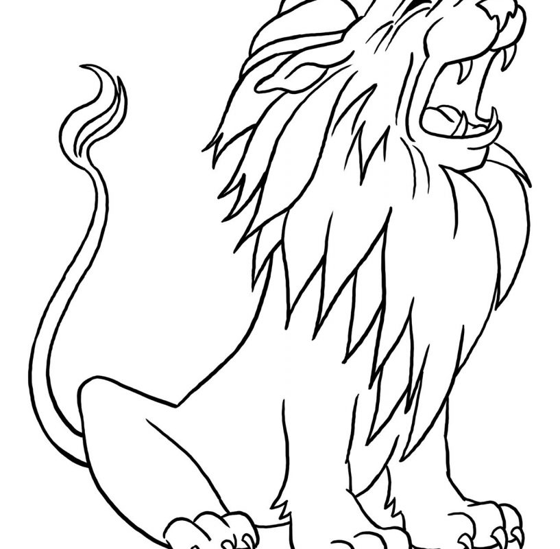 817x800 Coloring Pages Animals Asian Lions And Other To Print Lion Page
