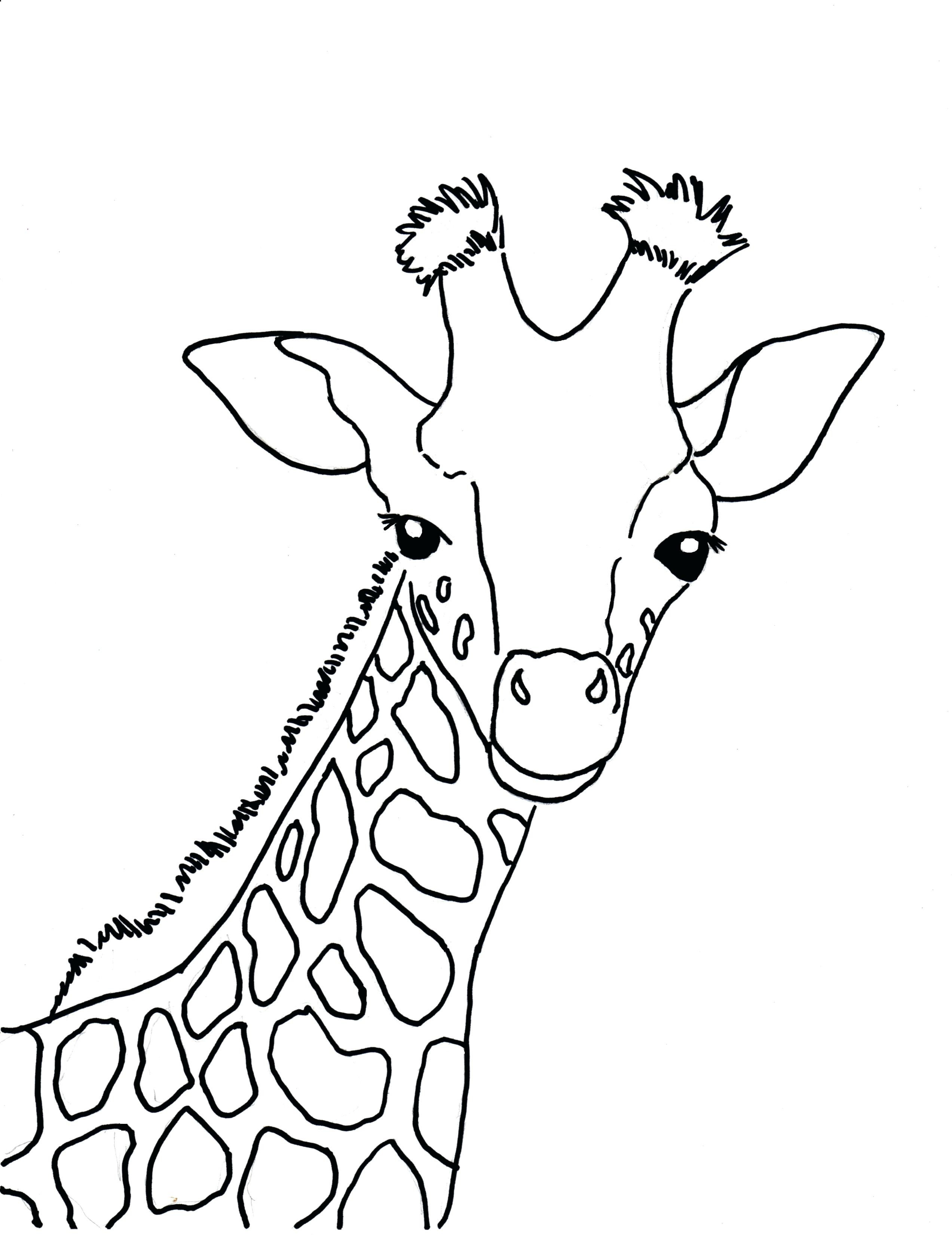 2545x3300 Cute Cartoon Baby Giraffe Coloring Page Free Printable Pages
