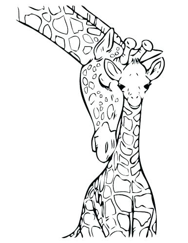 386x500 Giraffes Coloring Pages Critter And Cartoon Coloring Pages Giraffe