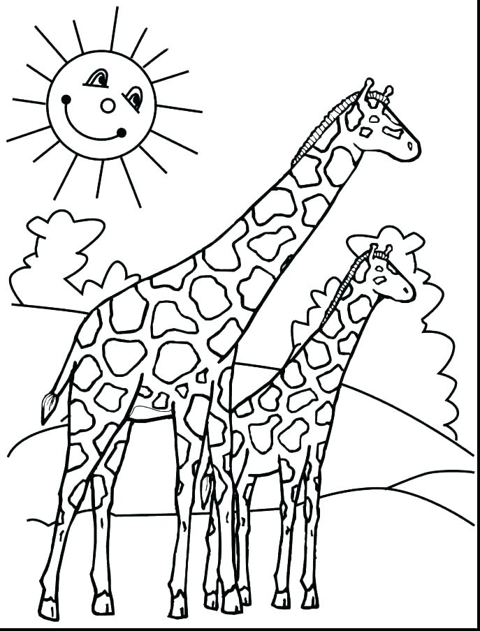 687x904 Kids N Coloring Pages Of Giraffe Giraffe Giraffe Colouring Pages