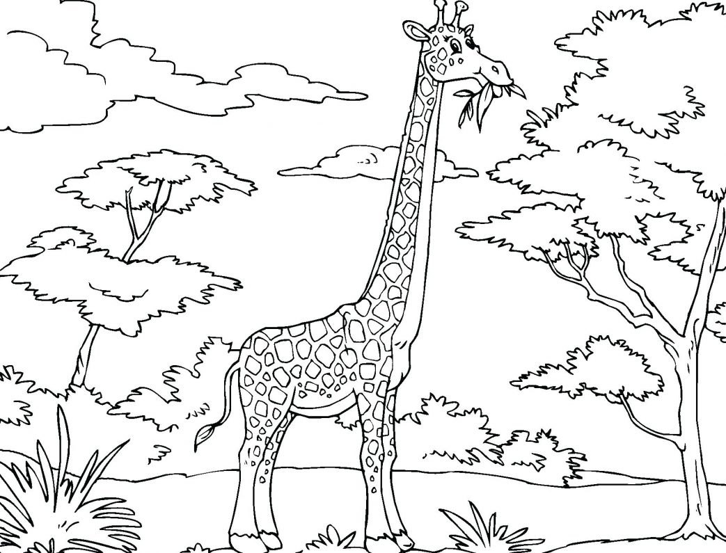 1043x795 Underwater Fish In The Sea Submarine Coloring Page Cartoon Giraffe