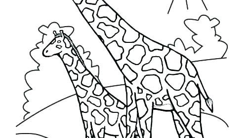 500x280 Giraffe Coloring Pages Giraffe Head Coloring Picture Baby Giraffe