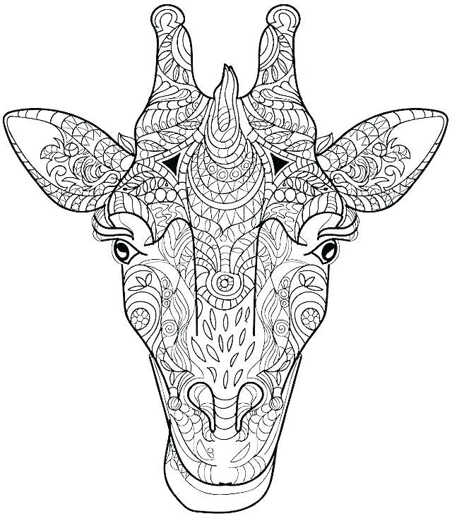 640x731 Giraffe Coloring Pages Giraffe Head Coloring Sheet Giraffe