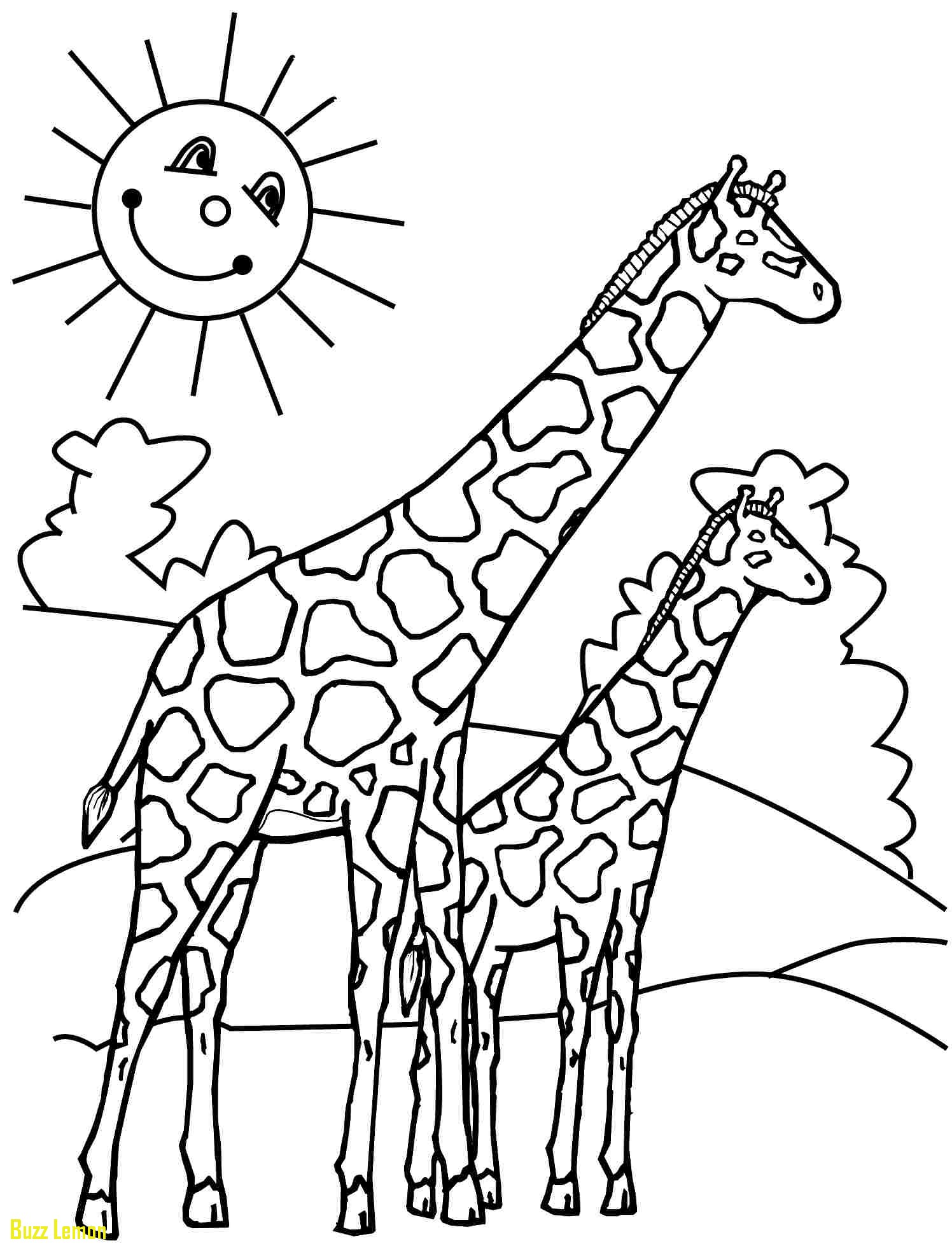 1496x1968 Giraffe Coloring Pages Luxury Wylreh About Giraffe Coloring Page