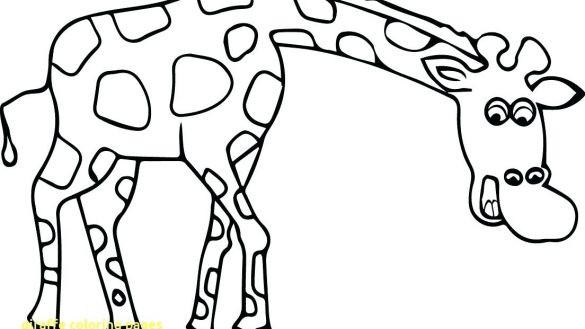 585x329 Giraffe Coloring Pages Printable Wagashiya