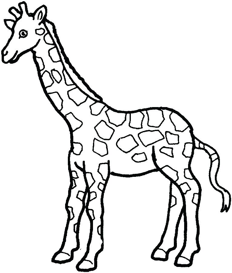 766x900 Giraffes Coloring Pages Giraffe Coloring Picture Free To Print