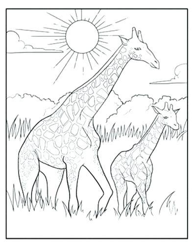 400x494 Giraffe Coloring Book