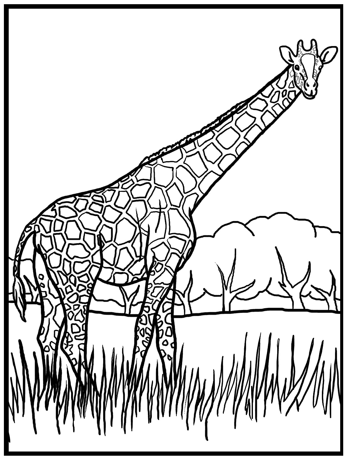 1160x1532 Giraffe Color Page Somebody Free Coloring Pages Coloring