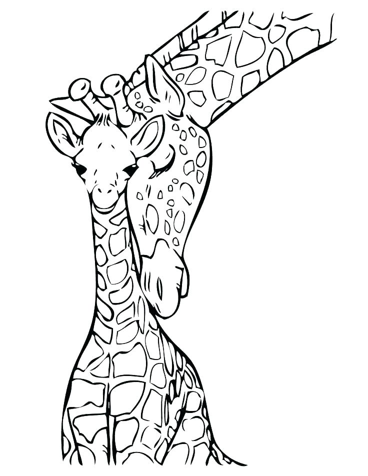 736x952 Giraffe Coloring Pages Printable Giraffe Coloring Page Coloring