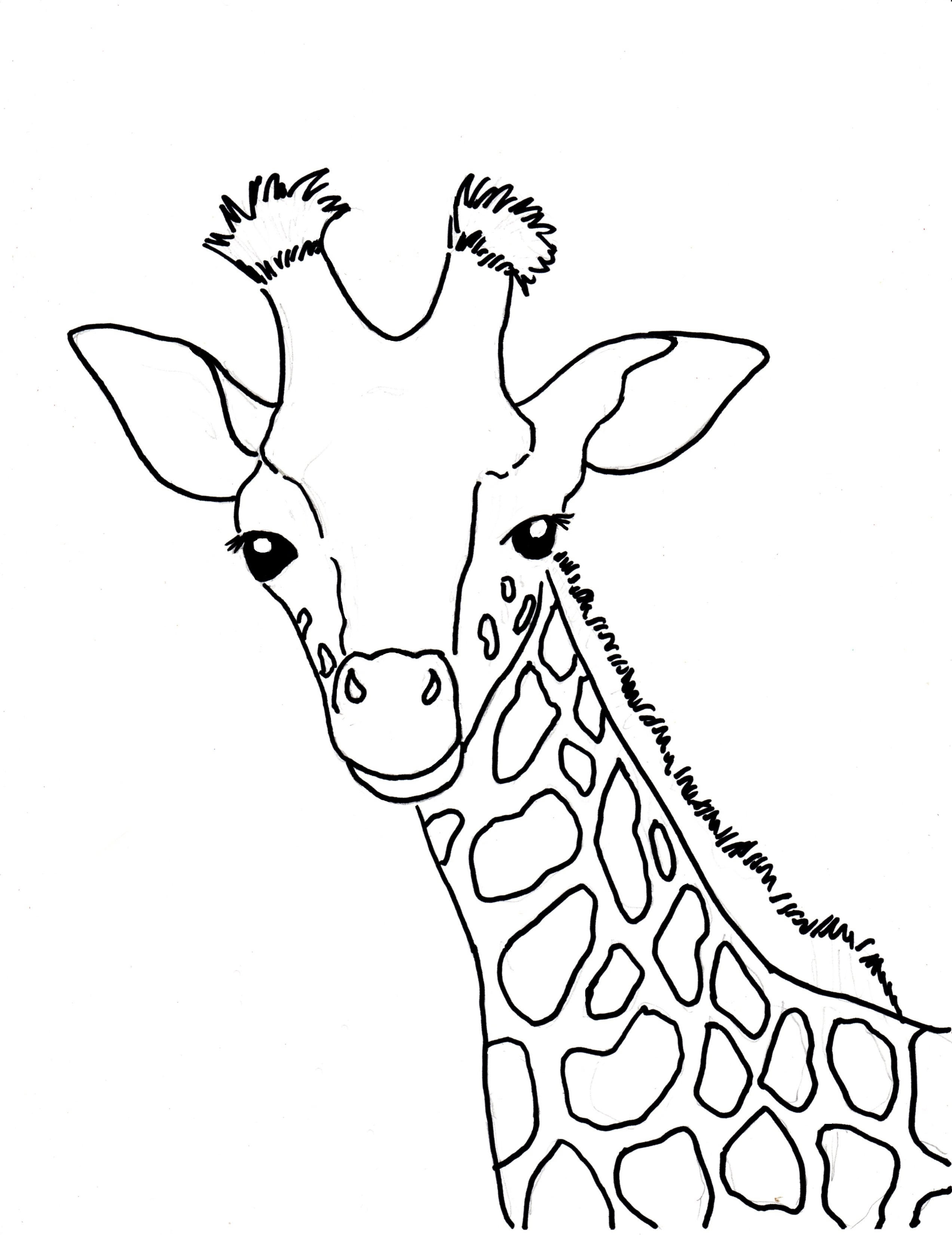 2545x3300 Giraffe Face Coloring Page Giraffe Coloring Pages Max Coloring