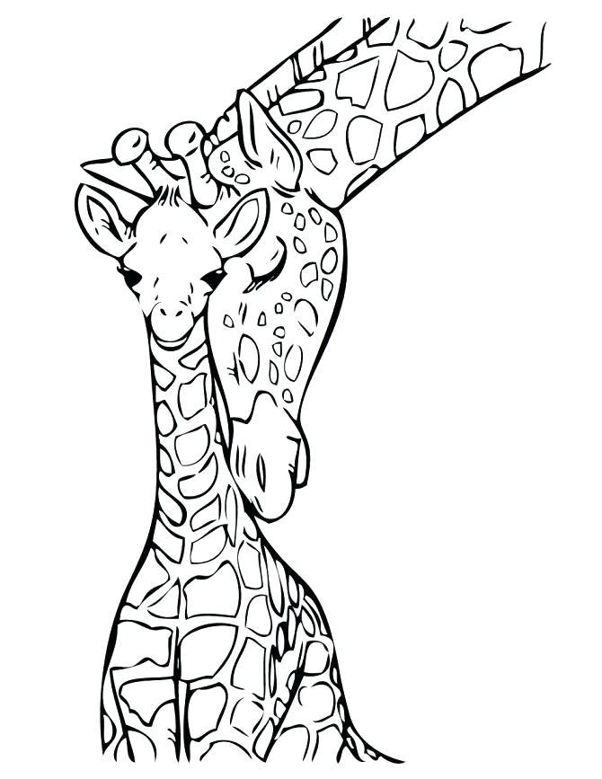 670x867 Cool Giraffe Color Page Cute Cartoon Giraffe Ng Pages Of Giraffes