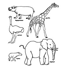 230x230 Top Free Printable Wild Animals Coloring Pages Online